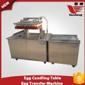 Egg Candling Table and Transfer Machine